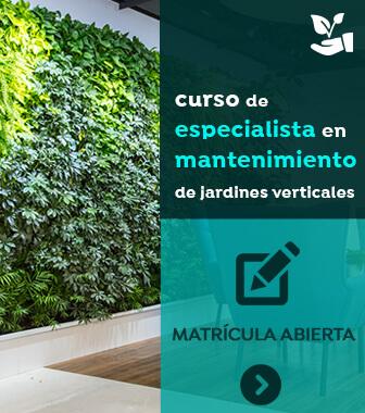 curso especialista mantenimiento jardines verticales