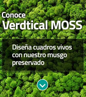 Descubre el Sistema Verdtical Moss