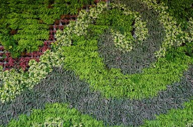 Mantenimiento Jardines Verticales