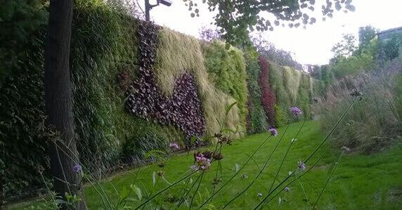Muros Verdes verticales