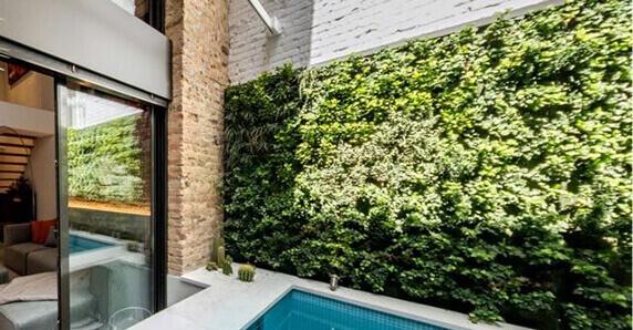 Muros Verdes jardines muro verde