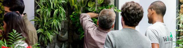curso diseño Jardín Vertical Inteligente