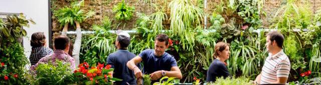 Jardines Verticales Inteligentes curso jardineria vertical