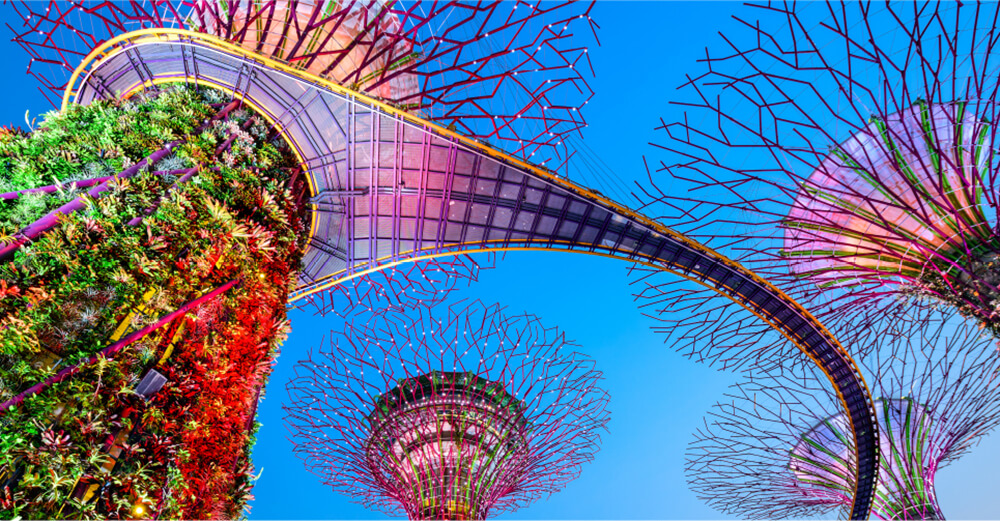 Gardens By The Bay Singapur