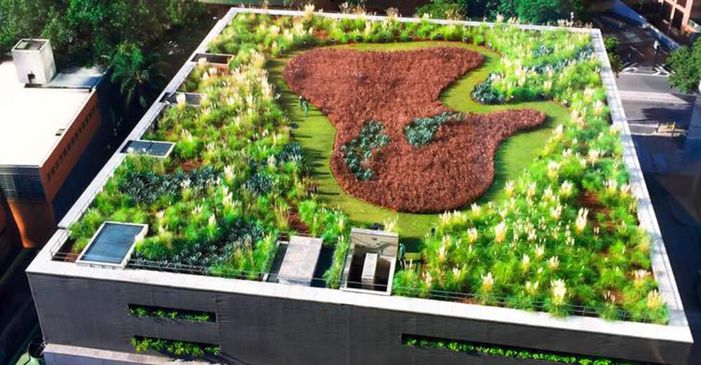 Cubierta Verde Vegetal